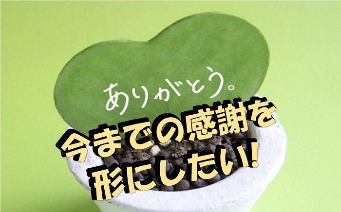メッセージ付きの植物