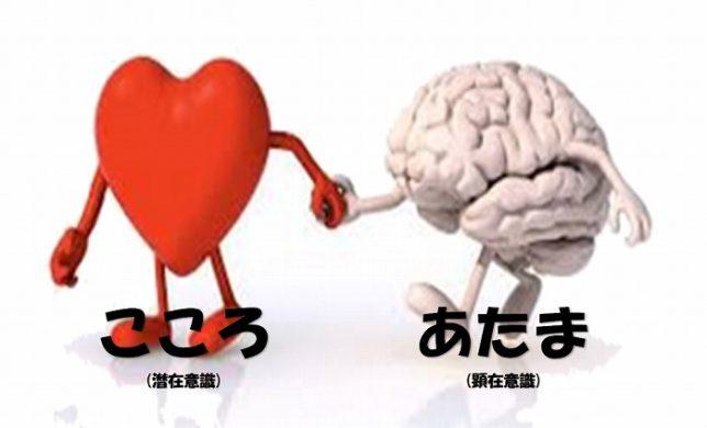 ハートと脳