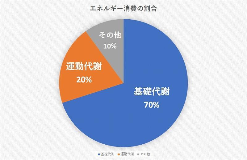 エネルギー消費の割合グラフ