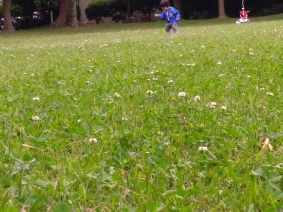 草っぱらにいる子ども
