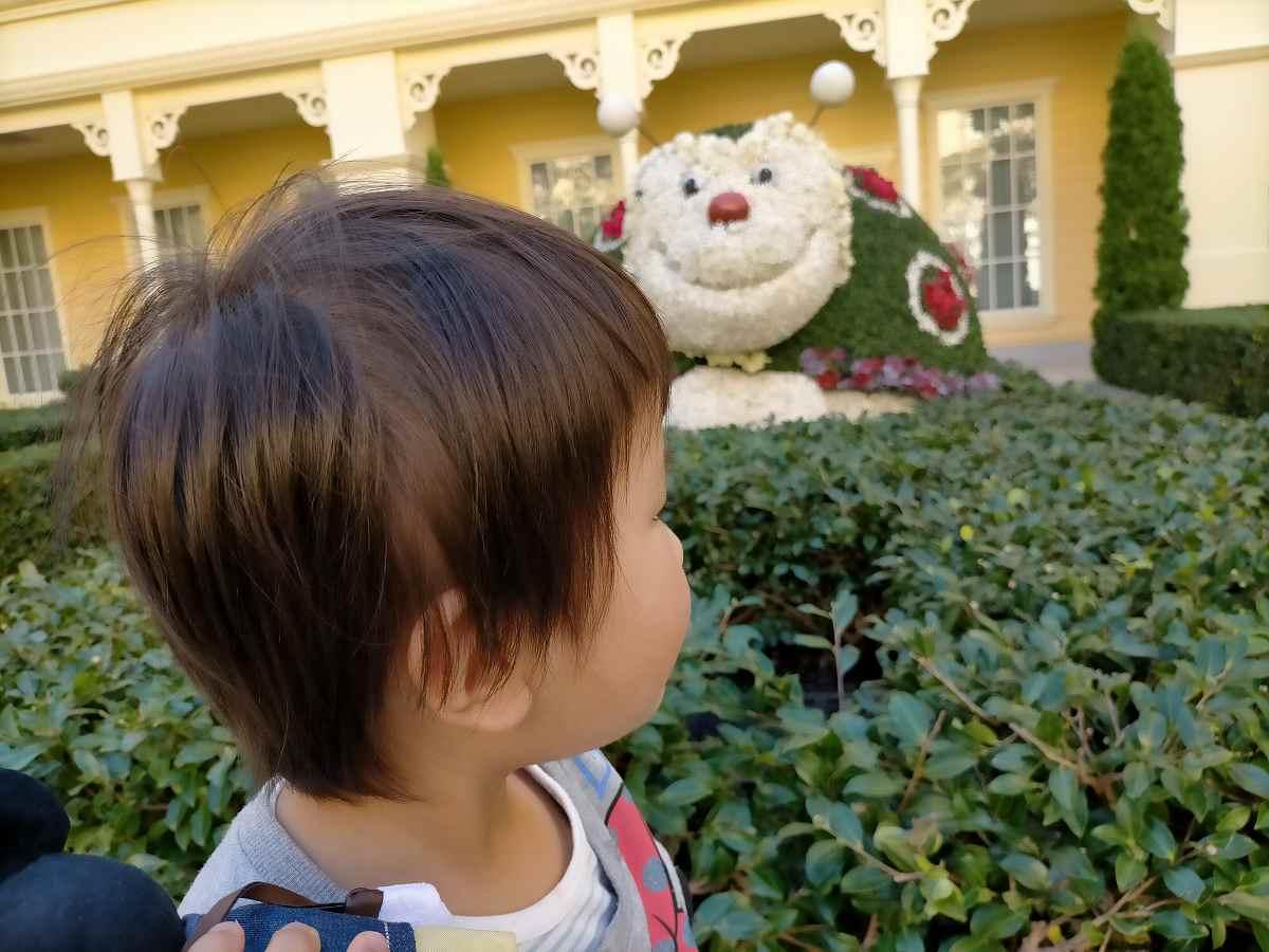 セレブレーションホテルの中庭で何かを見つめる子ども